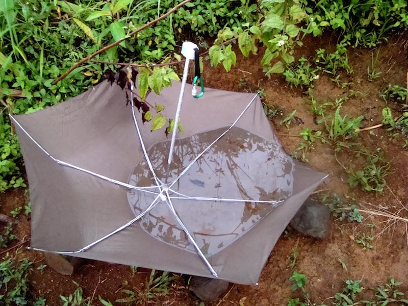 Payung yang alih fungsi