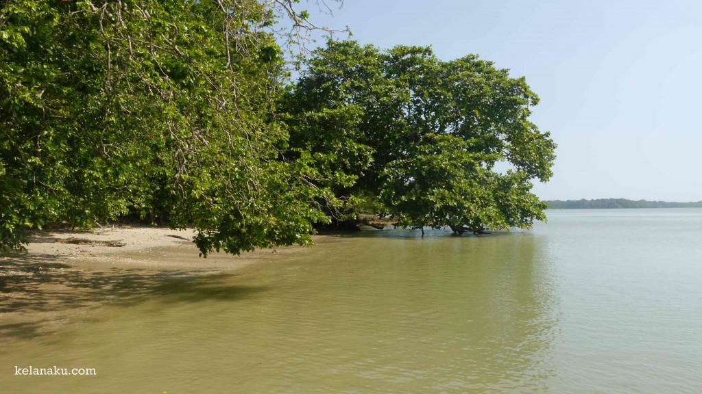 Pantai Ujung Kulon