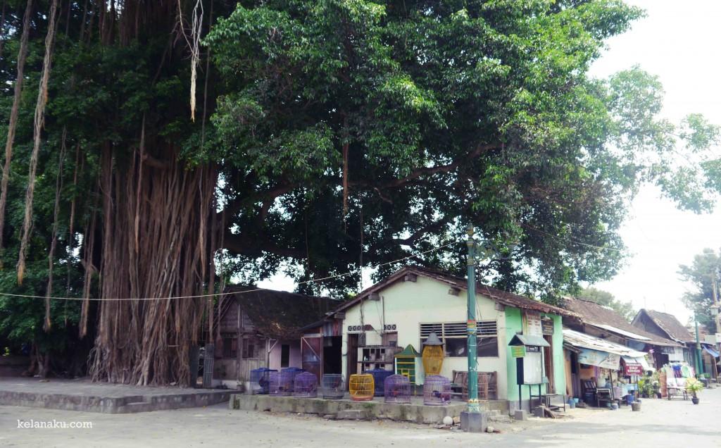 Perkampungan di Sekitar Masjid Matram Kota Gede