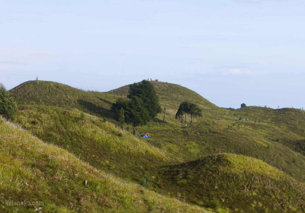 bukit-teletubies-gunung-prau_201