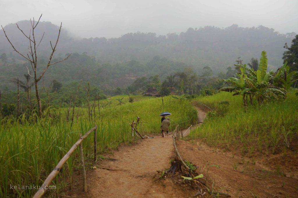 Tanah Merah Khas Baduy_543