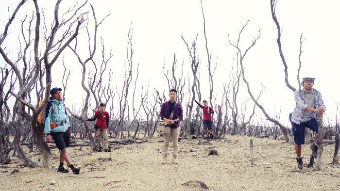 Hutan mati Papandayan_